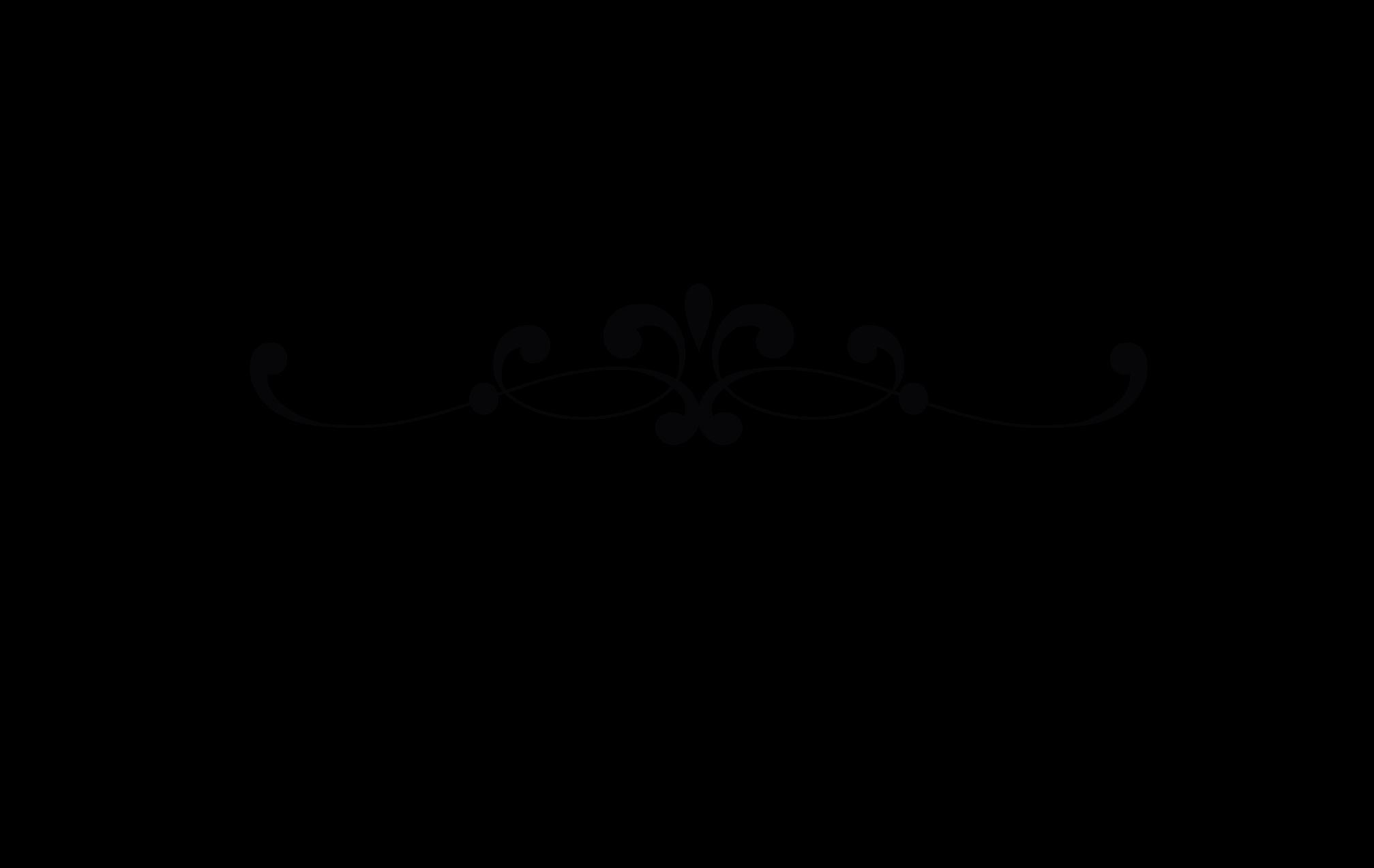Soft Cactus - logo w&b - 300dpi